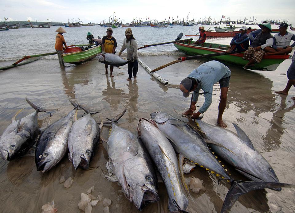 Indonesia Fishermen To Suffer More Under Asean Economic