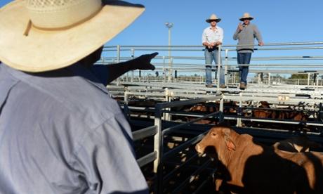Tony Abbott Confirms Australia And Japan Will Sign Free Trade